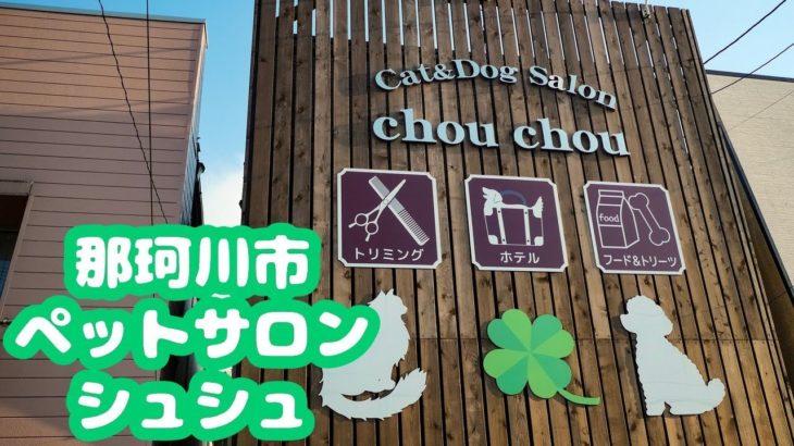 那珂川市Cat&Dog Salon ChouCho(シュシュ)のペットホテル紹介