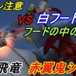 ドラゴンクエスト10 Version3 【PS4 初見プレイ】#186 ランガーオ襲撃 VS白フードの男 黒飛竜 赤翼鬼シシン kazuboのゲーム実況