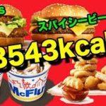 【日本一早いマック新商品食レポ】マイルドカレーチキンバーガーvsワイルドスパイシービーフバーガー