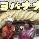 【マヨラー食】バナナにたっぷりマヨネーズで新感覚のスイーツ発見!?