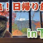 【弾丸!日帰り旅】岐阜県下呂市を観光♨︎食レポの神❗️現る。温泉最高ー【Hot spring】