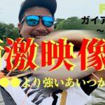南米ガイアナ ピラルク釣行4 衝撃映像⁉ 〇〇〇〇〇より強い危険生物登場⁉