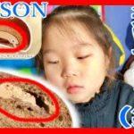 【ローソン】ゴディバ×チョコパン×チョコロール バレンタイン準備号【食レポ】