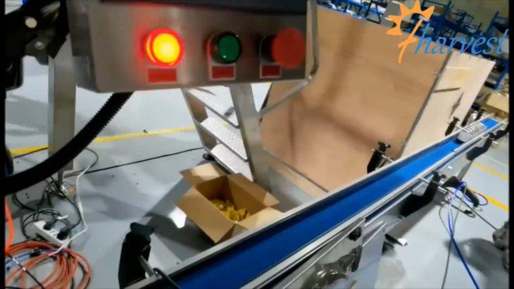 コーヒー豆用自動窒素缶シール機,顆粒,粉末窒素缶シーラー機
